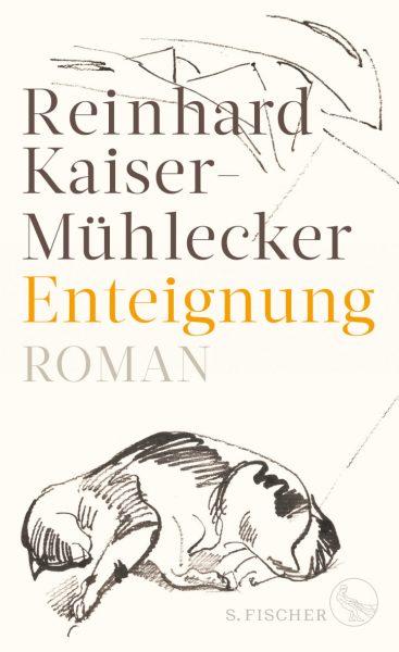 Kaier-Mühlecker - Enteignung